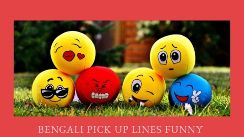 Bengali pick up lines funny