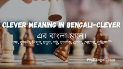 Clever meaning in bengali-Clever এর বাংলা মানে।
